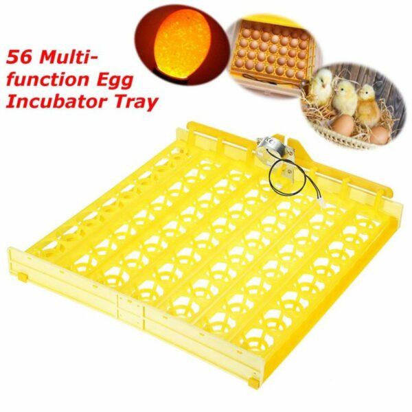 56 Egg Incubator Turner Tray